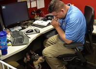 Ryan Kaono, a support agreement manager with the Air Force Installation and Mission Support Center, takes a moment to breath while his service dog Romeo assesses the situation. Romeo helps Kaono quickly recover from bouts of anxiety and night terrors related to enemy attacks while he was deployed to Saudi Arabia and Iraq. (U.S. Air Force photo by Armando Perez)