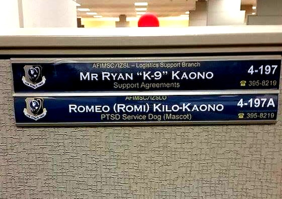 Ryan Kaono's work area clearly shows his cube mate and service dog Romeo belongs there too. (Courtesy photo)