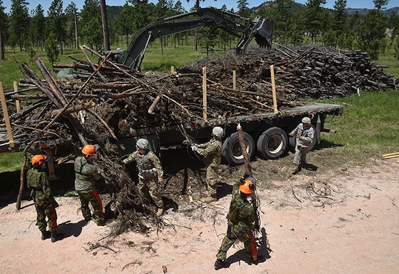 Soldiers from Task Force 38, Canadian Army, and Soldiers from Kansas Army Reserve and National Guard units, load timber onto trucks near Custer, S.D, June 12, 2018.