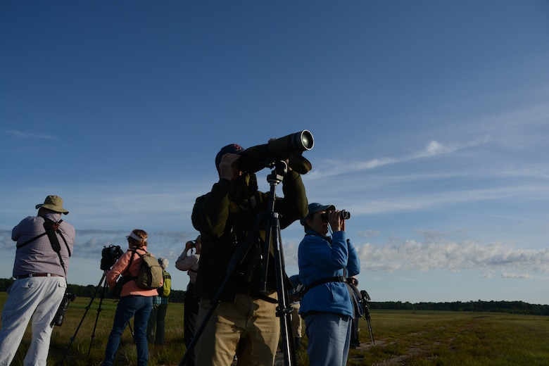 Members from three Massachusetts bird clubs visited Westover Air Reserve Base to see two rare species of birds. Westover's large grassland provides a suitable habitat for these birds. (U.S. Air Force photo by Senior Airman Max Goldberg