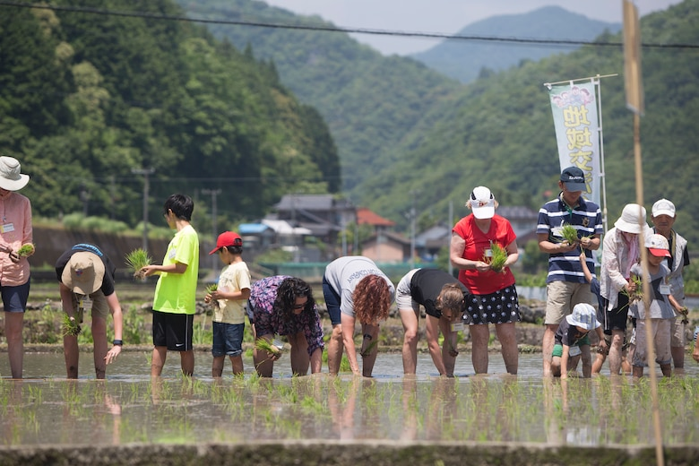 Station residents take to the fields, plant rice