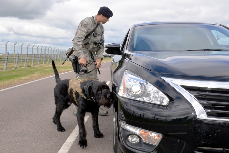 U.S. Air Force Staff Sgt. Alexandre Rogan, 100th Security Forces Squadron Military Working Dog trainer, and MWD Brock inspect a vehicle in response to a simulated security incident during an exercise at RAF Mildenhall, England, June 20, 2018. Such exercises are regularly scheduled to test responsiveness and readiness of base personnel. (U.S. Air Force photo by Tech. Sgt. David Dobrydney)