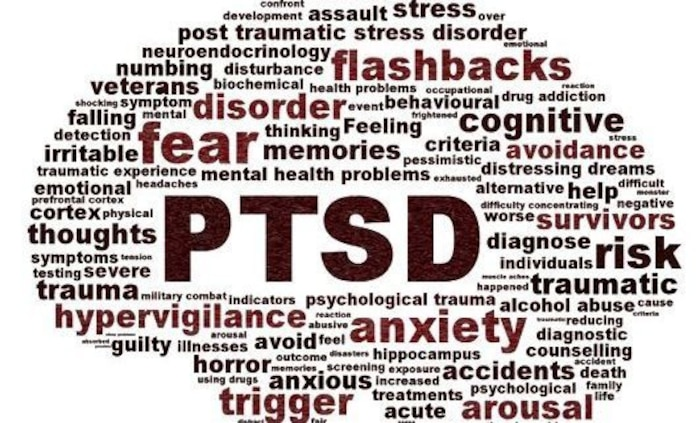During June's Post-Traumatic Stress Disorder Awareness Month the Behavioral Health Section staff is taking the opportunity to remind military personnel and civilians of the wide variety of support options available aboard Marine Corps Logistics Base Barstow, Calif.