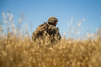 U.S. Marine Lance Cpl. James McKeag, a team leader with 1st Light Armored Reconnaissance Battalion, 1st Marine Division, provides security while conducting a patrol during the Rifle Squad Competition on Marine Corps Base Camp Pendleton, Calif., June 27, 2018. The units competed against each other to determine which squad will participate in the 1st MARDIV Infantry Competition in late August 2018.