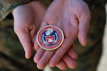 (U.S. Marine Corps photo by Sgt. Teng Yang)