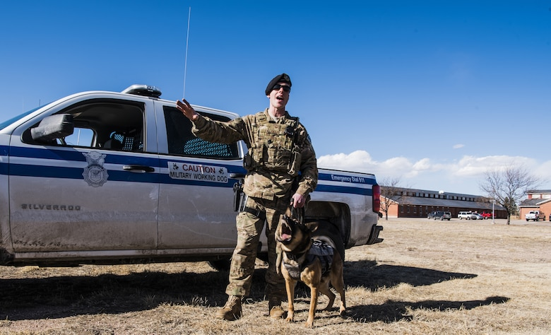 Staff Sgt. Kyle Snape, 90th Security Forces Squadron military working dog handler, gives a demonstration with Military Working Dog Nemo to Airmen during the Mission Immersion Day at F.E. Warren Air Force Base, Wyo., Feb. 27, 2018. The Airmen were given various demonstrations by 90th SFS such as an inside look at the Humvees, tools used during an emergency situation, and a mock convoy. The Mission Immersion Day was put together to allow Airmen the opportunity to exercise cross communication between the different career fields on base.  (U.S. Air Force photo by Airman 1st Class Abbigayle Wagner)
