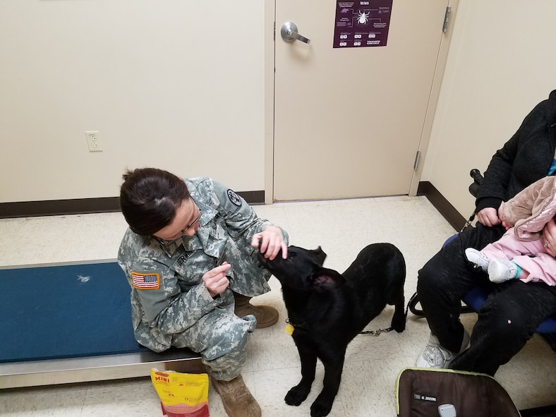Capt. Cassandra Kerwin offers Sadie a treat so she can readily check his teeth. (U.S. Air Force photo/Laura McGowan)