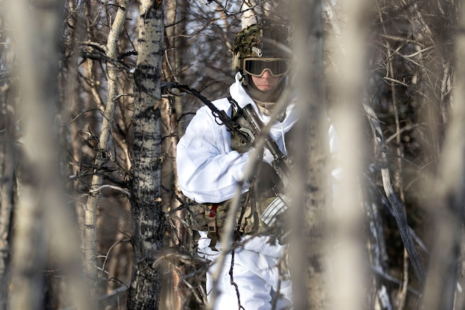 A soldier maneuvers through the woods to his next objective.