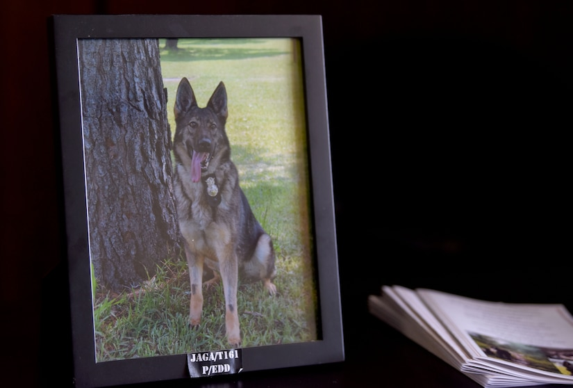 A photograph of Military Working Dog Jaga rests on the table at the MWD retirement ceremony Feb. 23, 2018, at the base theater.