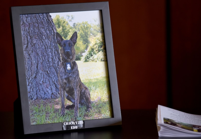 A photograph of Military Working Dog Chico rests on the table at the MWD retirement ceremony Feb. 23, 2018, at the base theater. Retirement ceremonies honors the service given to the military from its members, including MWDs