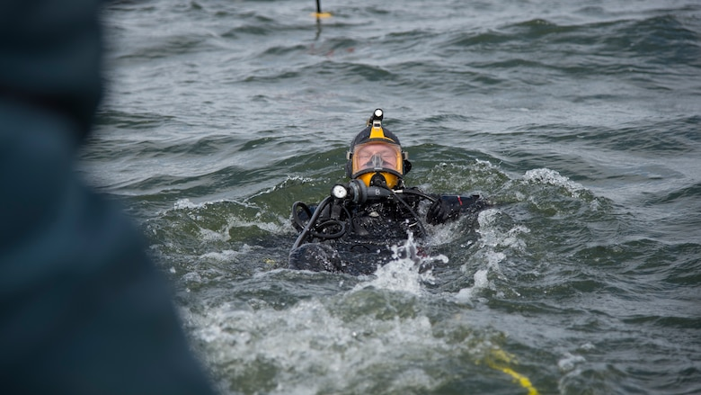 U.S. Navy Diver 2nd Class Mitchell Apgar, assigned to Commander, Fleet Activities Sasebo, dives into Lake Ogawara during cleanup efforts in Tohoku Town, Japan, March 10, 2018.
