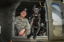 Across the Air Force, military working dogs provide base defense against threats while on patrol, such as drug and explosives detection. In honor of National K-9 Veteran's Day, here are some photo selects from Incirlik's MWD teams.