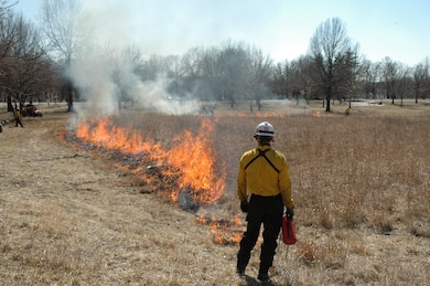 Environmental stewardship rangers and maintenance staff conduct prescribed burns as a management tool to remove old plant material and woody growth that competes with a prairie's warmer season species.