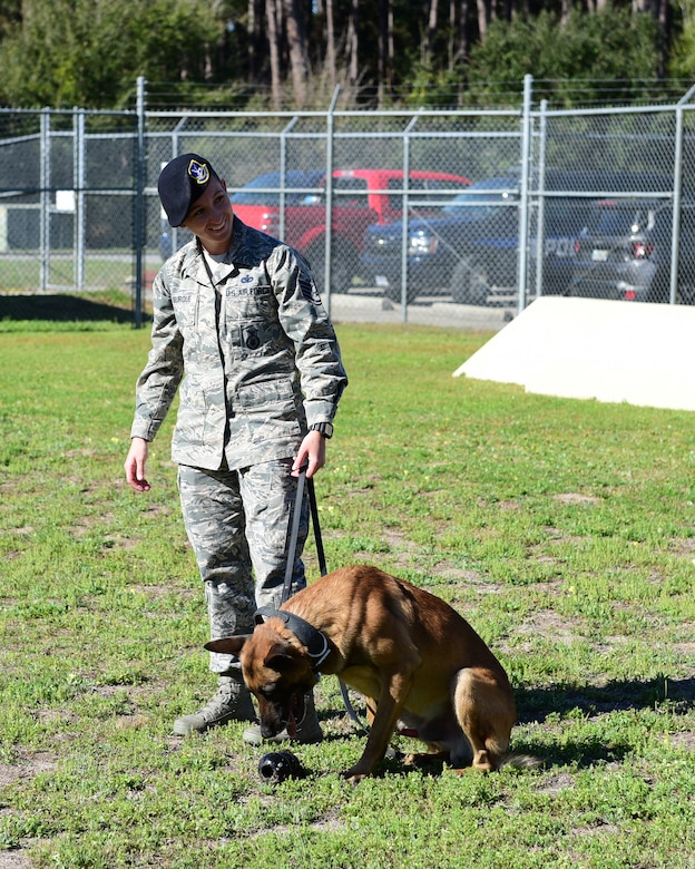 U.S. Air Force Staff Sgt. Caitlin Bourque, 325th Security Forces Squadron military working dog handler, and her partner, Atila, during an interview at Tyndall Air Force Base, Fla. March 2, 2018. A military working dog handler is responsible for the care and training of his or her service dog, which contributes to combat operations abroad and installation security at home by providing target odor detection for both explosives and drugs. (U.S. Air Force photo by Senior Airman Cody R. Miller/Released)