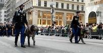 Irish Brigade will lead St. Pat's parade again