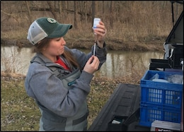 Water Quality Intensive Surveys