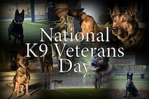 National K9 Veterans Day is March 13, 2018. U.S. Air Force Security Forces military working dogs and their handlers work together to provide safety and security at home and overseas.