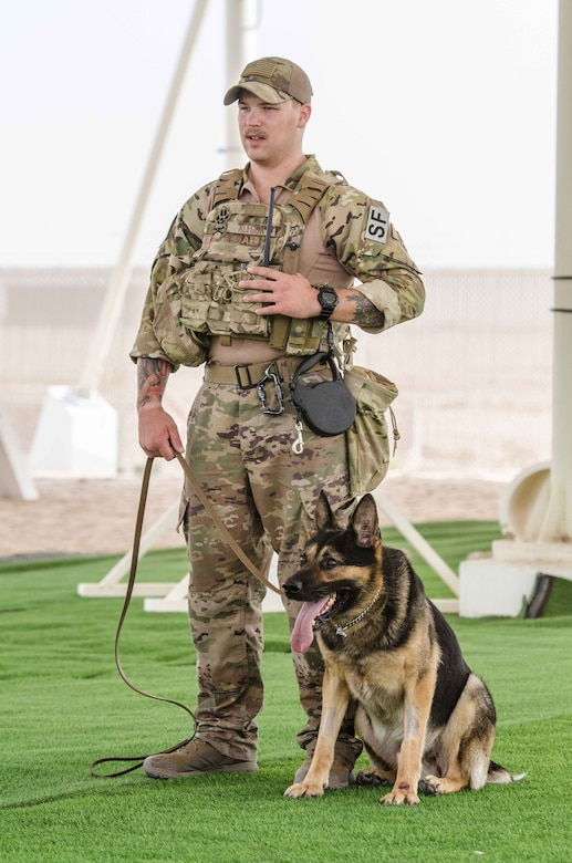 Military working dogs demonstrate controlled aggression tactics