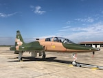 T-38C dons F-4's colors for role during Freedom Flyer Reunion