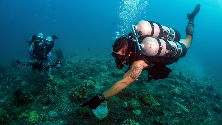 A diver points to a spot on the sea floor as another looks on.