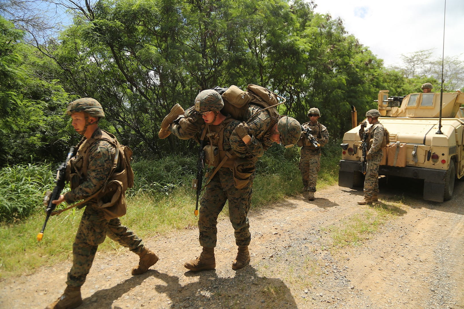 1/3 conducts CAAT mounted patrol during Exercise Bougainville I