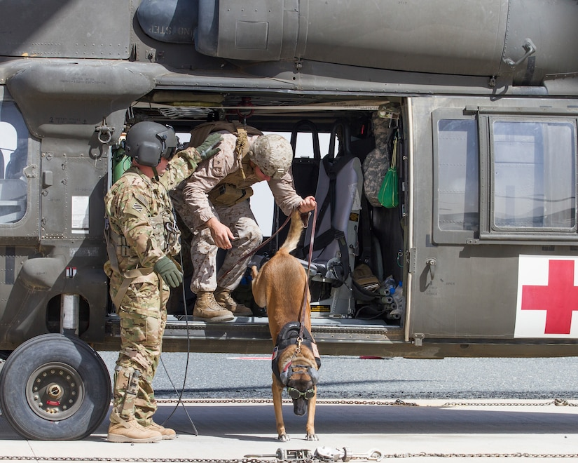 Sergeant Alexander Lucas, a military dog handler with the 1st Marine Expeditionary Force, and his military working dog, Patriot, exit a UH-60 Black Hawk helicopter as a part of medical evacuation training at Camp Buehring, Kuwait, March 13, 2018.