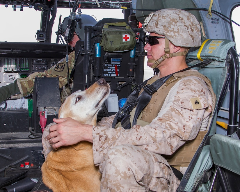 Cpl. Anthony Woodward, a military dog handler with 2nd Marine Expeditionary Force, rides on a HH-60 Black Hawk helicopter as a part of a medical evacuation training at Camp Buehring, Kuwait, March 13, 2018.