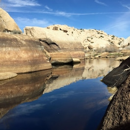 A water-storage facility located in Joshua Tree National Park, where hikers often spot Big Horn sheep.