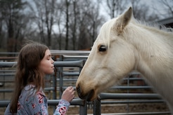 A young girl with wearing a gray shirt with pink flowers on it looks and pets a white horse.