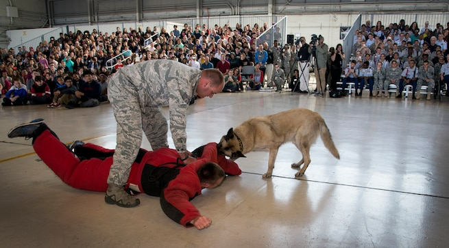 U.S. Air Force Staff. Sgt. Matthew McElyea, a K-9 trainer assigned 6th Security Forces Squadron, practices a bite scenario with trained military working dog, Jecky, during the Science, Technology, Engineering, Arts and Math (STEAM) Day at MacDill Air Force Base, Fla., March 21, 2018.