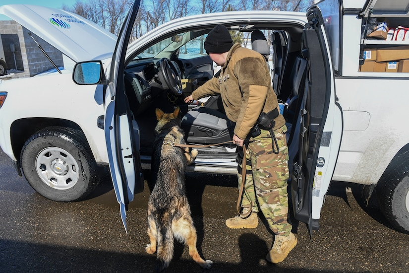 Airmen bond with 4 legged wingmen us department of defense article air force staff sgt heather johnson works with her military working dog eventshaper