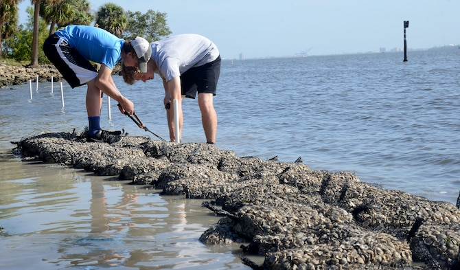 Boy Scouts from the local community cut shell bags during an oyster reef build at MacDill Air Force Base, Fla., March 30, 2018.