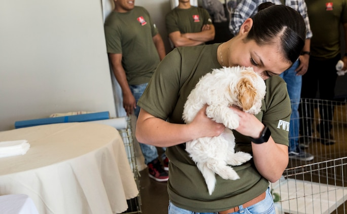 """U.S. Marines stationed on Marine Corps Air Station (MCAS) Yuma, Ariz., volunteer with the Humane Society of Yuma Tuesday, April 17, 2018. While at the Humane Society, the volunteers made adoption kits for kittens, walked and played with shelter dogs, and cared for the shelter pets. The Humane Society of Yuma was one of the volunteer opportunities provided to Marines aboard MCAS Yuma during the """"Days of Service"""" initiative; other opportunities included Saddles of Joy, the Yuma Food Bank, and Old Souls Animal Farm."""