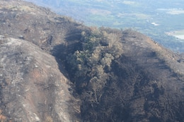 The contrast of burn scars on the mountainsides overlooking plush green landscapes in Santa Barbara County can be seen Jan. 18 from a UH-60 Blackhawk helicopter.