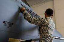 Staff Sgt. Kealohi Glanstein, 4th Aircraft Maintenance Squadron crew chief, reveals the new dedicated crew chief for the flagship aircraft of the 335th Fighter Squadron, May 18, 2018, at Seymour Johnson Air Force Base, North Carolina.