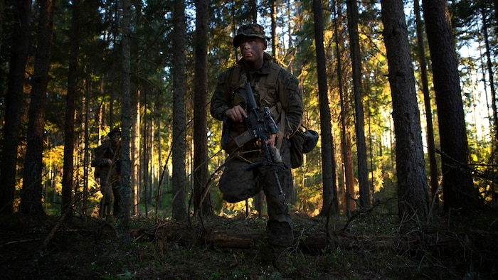 Marines and Sailors with Marine Rotational Force-Europe 18.1 advance to their assault position during a platoon counter-attack during Exercise Hedgehog at Tsooru, Estonia, May 9, 2018. Hedgehog is an annual event designed to strengthen strategic cooperation and partnership among participants. This is the first time the Marine Corps has participated in the exercise, which involved more than 18,000 service members from several NATO countries.