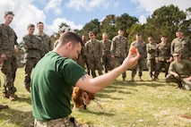 British Army Staff Sgt. Steven Kelly, survival instructor with 29th Commando Regiment, Artillery Battery, shows Marines with 4th Air Naval Gunfire Liaison Company, Force Headquarters Group, how to properly pluck and dress a chicken during survival training, in Durness, Scotland, April 26, 2018.