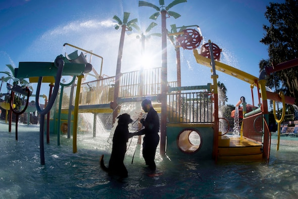 U.S. Air Force Senior Airman Damion Morris, a military dog handler assigned to the 6th Security Forces Squadron, tests the water with his military working dog, Lleonard, at Adventure Island, Tampa, Fla. Oct. 29, 2018.