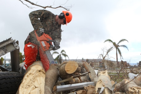 Sgt. Charles Herndon, a combat engineer with Combat Logistics Battalion 31, chainsaws a downed tree outside the Tinian Public School, Oct. 30, 2018. Herndon, a native of Carrollton, Georgia, enlisted in June 2013 after graduating from Central High School in May of the same year. Marines with the 31st Marine Expeditionary Unit and CLB-31 spent the day helping clear debris at the school as part of the U.S. Defense Support of Civil Authorities across the Commonwealth of the Northern Mariana Islands, to which Tinian belongs. The Marines arrived at the request of CNMI officials and the U.S. Federal Emergency Management Agency to assist relief efforts in the wake of Yutu, the largest typhoon to ever hit a U.S. territory. The 31st MEU, the Marine Corps' only continuously forward-deployed MEU, provides a flexible force ready to perform a wide-range of military operations across the Indo-Pacific region. (U.S. Marine Corps photo by Gunnery Sgt. T. T. Parish/Released)