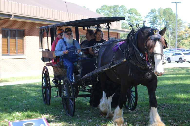 Horse-drawn buggy rides was one of several activities open to attendees of the Military Appreciation: Past, Present and Future Picnic, held Oct. 12 at Arnold Lakeside Center. (U.S. Air Force photo by Bradley Hicks)
