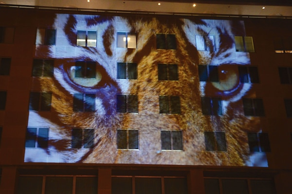 "In 2016, the U.S. Department of State (DOS) in partnership with Discovery Communications, Vulcan Productions, and the file ""Racing Extinction"" projects images of wildlife on the DOS Washington DC façade to raise awareness of and spur action on the global threat of wildlife trafficking. (State Department)"