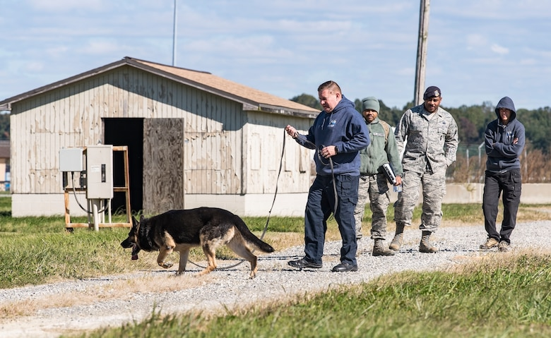 "Cpl. Dale Trotter, Worcester County, Md., Sheriff's Department K-9 Unit handler, along with his partner, ""Edo,"" a nine-year-old German Shepherd explosive detection dog, search for hidden explosives Oct. 24, 2018, at Dover Air Force Base, Del. Standing in the background from left, Staff Sgt. Jared Brown, 436th Security Forces Squadron military working dog trainer, Tech. Sgt. Dominique Singleton, 436th SFS MWD kennel master, and Sgt. Katie Edgar, Worchester County, Maryland Sheriff's Department K-9 Unit supervisor, watched Trotter work Edo as he searched for hidden explosives. (U.S. Air Force photo by Roland Balik)"