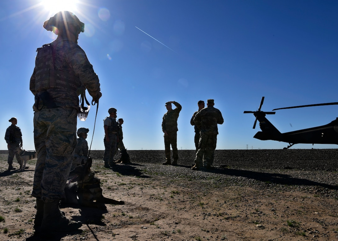 Members from the 56th Security Forces Squadron discuss various training operations with Arizona Army National Guard medics and UH-60 Black Hawk crew members during a joint training exercise at Glendale Municipal Airport Nov. 2, 2018, in Glendale, Ariz.