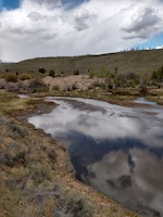 A one-acre pond where Corske and Box Creek confluence with adjacent historic Box Creek placer mine tailings.