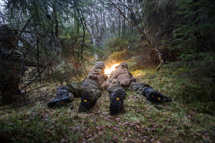 U.S. Marines assigned to 2nd Battalion, 2nd Marine Regiment, 2nd Marine Division, participate in an exercise during Trident  Juncture 18, Norway, Nov. 7, 2018. Trident Juncture 18 enhances the U.S. and NATO Allies' and partners' abilities to work together collectively to conduct military operations under challenging conditions. (U.S. Marine Corps Photo by Cpl. Dominic Littleton)