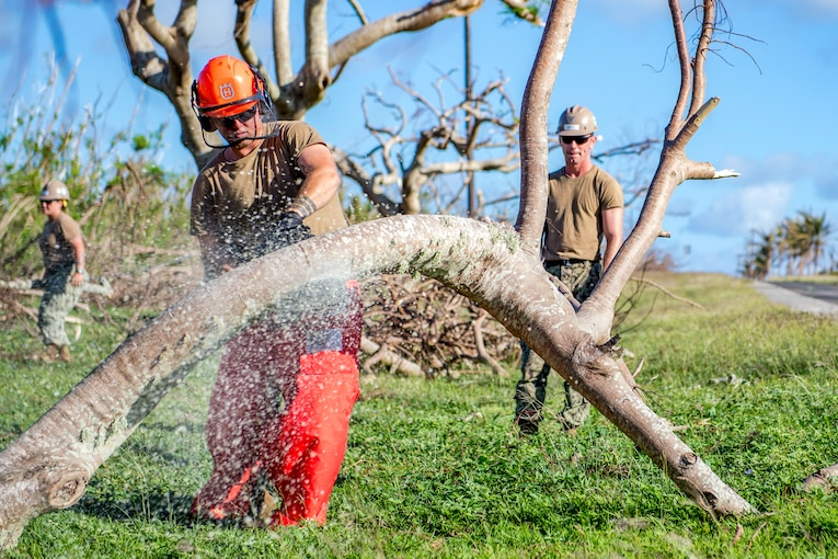 A sailor cuts a large tree branch with a chainsaw.
