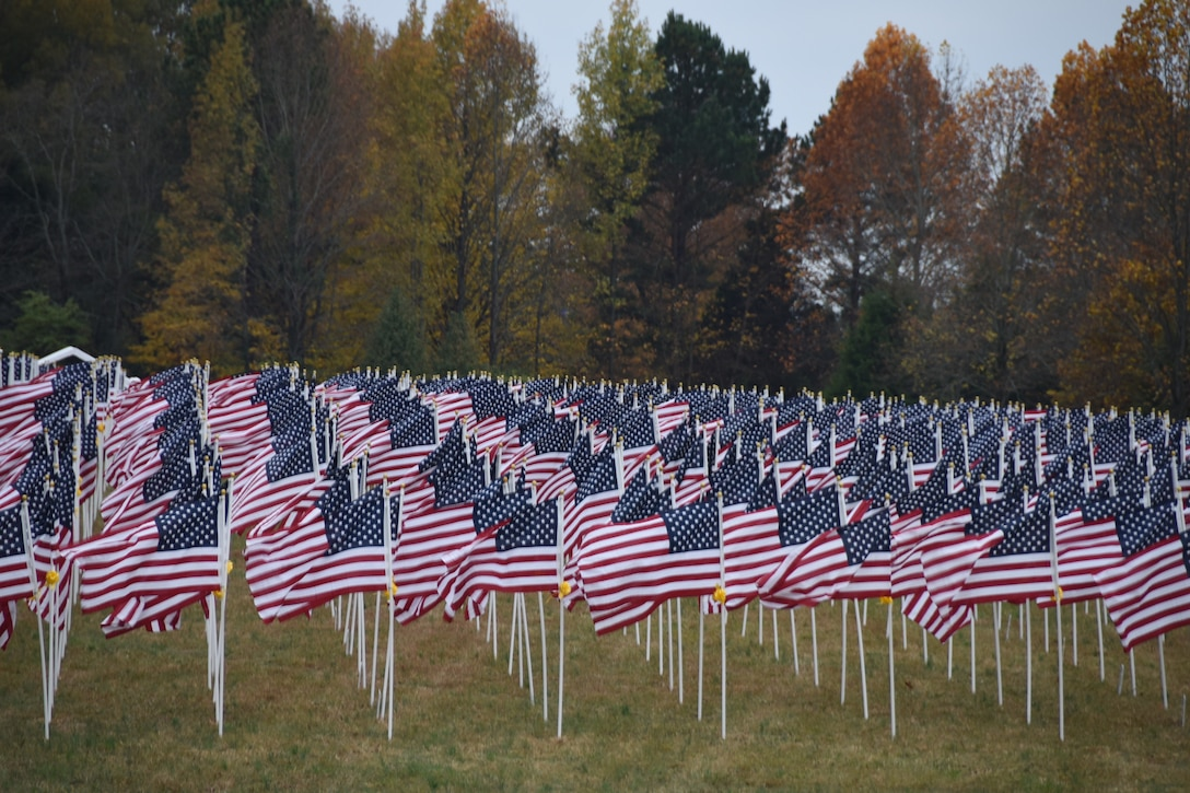 Over 1000 flags wave in the wind for a Veterans Day weekend event on Nov. 9, 2018 in Hermitage, Tennessee.