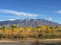 CORRALES, N.M. – Autumn colors along the Rio Grande, as seen from one of the District's restoration sites, Oct. 21, 2018. Photo by Danielle Galloway. This 2018 photo drive entry tied for second place based on employee voting.
