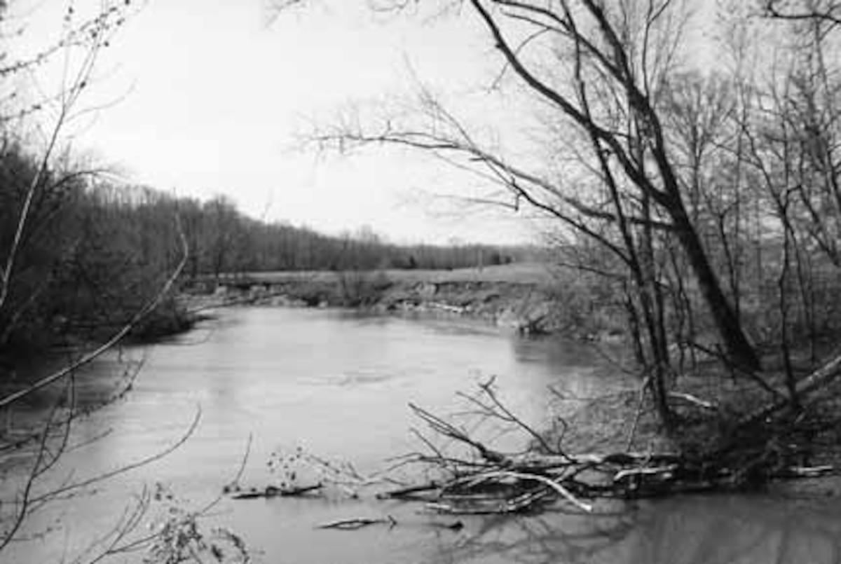 Green River Handy Riparian Habitat Restoration Project (or simply, GR ecosystem restoration site) Near Greensburg, Kentucky (photo by Richie Kessler, TNC, Winter, 2000-2001).