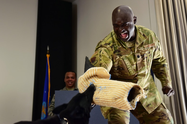 Kiara, 799th Security Forces Squadron Military Working Dog, performs her last bite with Lt. Col. Kenneth, 432nd Aircraft Communications Maintenance Squadron commander, during her retirement ceremony at Creech Air Force Base, Nevada, Nov. 15, 2018. Kiara was a Department of Defense certified Patrol and detection dog for the U.S. Air Force. (U.S. Air Force photo by Airman 1st Class Haley Stevens)